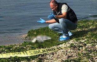 Beylikdüzü'nde korkunç sabah! Bebek cesedi kıyıya vurdu…