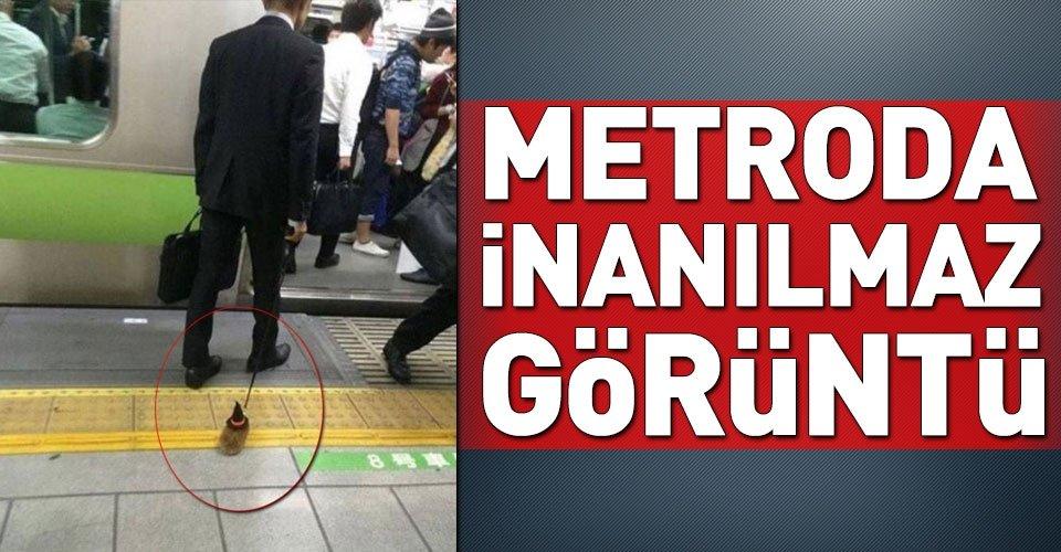 Metroda inanılmaz görüntü!