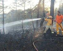 Kastamonu'daki yangın kontrol altında
