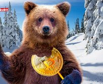 Ayı piyasası nedir? Kripto paralar ayı sezonuna mı girdi?
