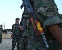 YPG/PKK, DEAŞ'lıları serbest bıraktı