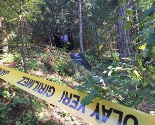 Zonguldak'ta ayı saldırısına uğrayan kişi öldü