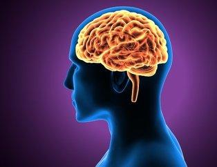 Bu test beyin yaşınızı ortaya çıkarıyor