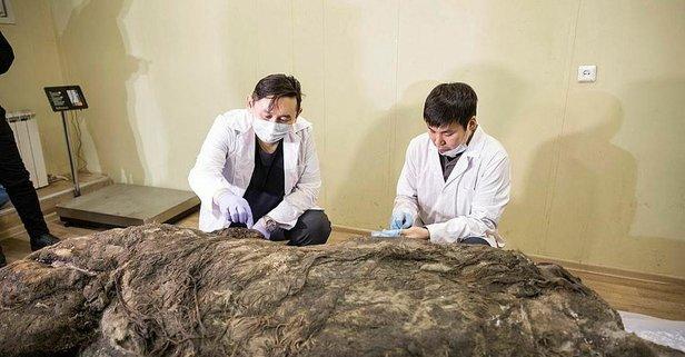40 bin yıllık keşif!