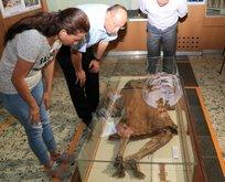 14 asırdır bozulmayan ceset müzede!