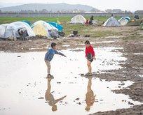 Mülteci tur