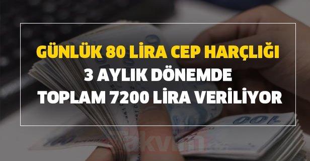 Günlük 80 lira cep harçlığı ile 3 aylık dönemde toplam 7200 lira veriliyor