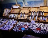 Tezgahlardaki balık bereketi fiyatlara yansıdı