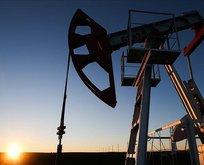 İran ile Rusya petrolde anlaştı
