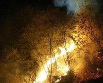 Trabzon'da son 48 saatte 35 noktada yangın!