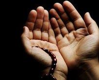 Evde teravih namazı nasıl kılınır? Teravih namazı evde kılınışı! Teravih namazı kaç rekattır?