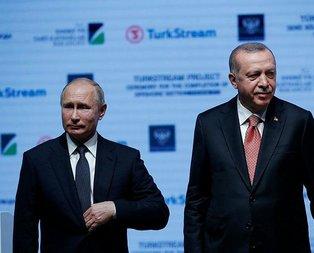 Avrupa'ya Türkakım'ı
