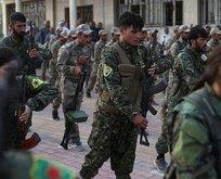 PKK ve Haşdi Şabi Türkiye'ye karşı birleşti!