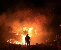 Ezgi Mola'ya Hatay yangını tepkisi!