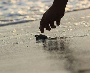 537 bin 424 tanesi denizle buluştu