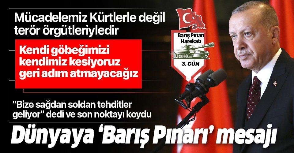 Son dakika: Başkan Erdoğan'dan dünyaya 'Barış Pınarı' mesajı: Kim ne derse dedin...