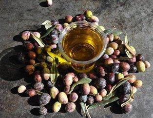 Zeytin çekirdeği yemenin faydaları saymakla bitmiyor!