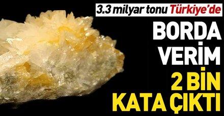 3.3 milyar tonu Türkiye'de | Borda verim 2 bin kata çıktı