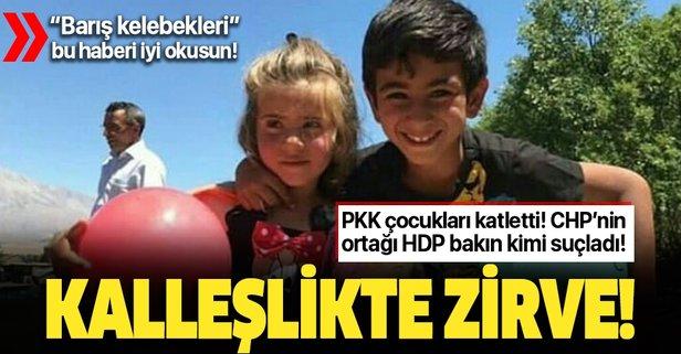 PKK, Ayaz ve Nupelda'yı katletti, HDP devleti suçladı!