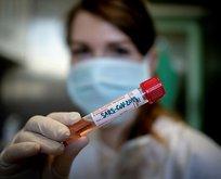 Koronavirüs kadınları neden daha az etkiliyor?