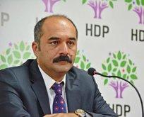 HDP'li milletvekiline PKK soruşturması!