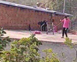 Kocaeli Gebze'de kan donduran olay! Çocuklar kediyi iple çatıdan sarkıtıp süpürge ile işkence ettiler