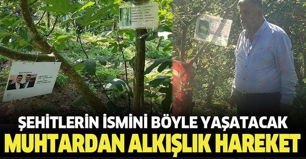 Şehitlerin ismi ağaçlarda yaşayacak!