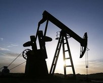 Emtia piyasalarında petrol yükselişte!