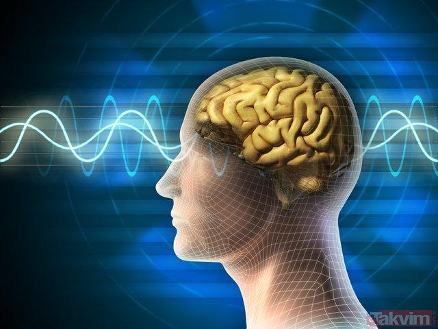 Dikkat bu alışkanlıklar beyni yaşlandırıyor! Sağlıklı bir beyin için 13 altın kural...