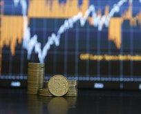 Rusya Merkez Bankası'ndan kademeli faiz kararı