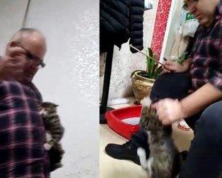 Kediye işkence eden zanlı akıl sağlığı incelenecek!