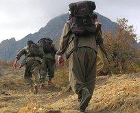 PKK'da çözülme sürüyor! O terörist teslim oldu