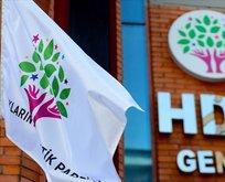 HDP'nin kapatılması davasında flaş gelişme