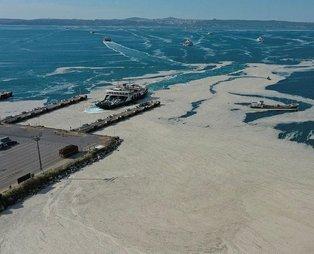 'Deniz salyası' gerçekleri: 'Temel atmama' değil yüzlerce 'temel atma' ister!