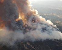 Pakdemirli: Ankara'daki yangın kontrol altına alındı