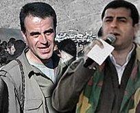 Selahattin Demirtaşın Kandildeki PKKlı abisi Nurettin Demirtaş öldürüldü iddiası