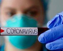 Koronavirüs nedeniyle acil durum ilan ettiler