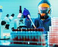 5 ülkenin hazırladığı koronavirüs raporu basına sızdı!