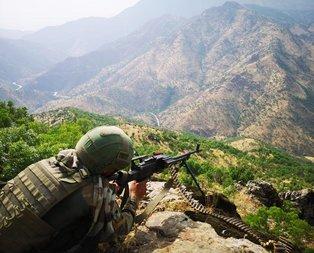 PKK'ya ağır darbe! 1'i turuncu, 3'ü gri kategorideydi