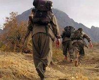 300 bin lira ödülle aranan PKK'lı teslim oldu