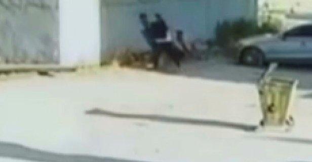 Kız kardeşinin videosunda gördüğü öğrenciyi dövdü