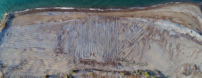 Antalya'da inanılmaz olay! Tarla gibi sürülen caretta caretta kumsalında yuvalar yok oldu