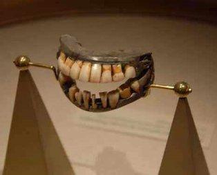 Bu dişlerin sahibi kim?
