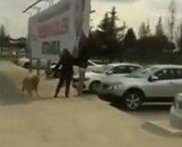 CHP'li kadının yaptığına inanamayacaksınız