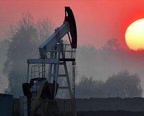 Brent petrolde hareketli gün