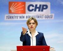 CHP'li Böke ABD elçisi ile görüşüp istifa etti