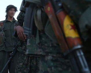 YPG'nin korkunç vahşeti! Diri diri toprağa gömmüşler