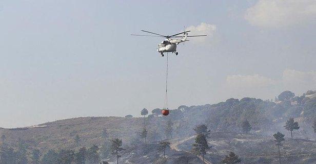 Manisa'da orman yangını! Görüntüler geldi