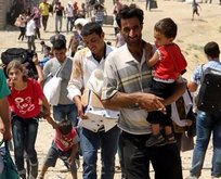Hükümetten açıklama: 311 bin 968 bin Suriyeli...