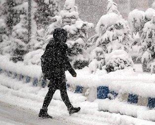 Elazığ, Ardahan ve Nevşehir'de yarın okullar tatil mi?